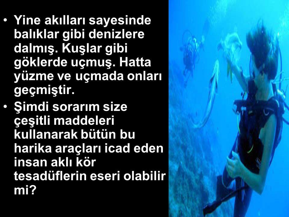 •Yine akılları sayesinde balıklar gibi denizlere dalmış.