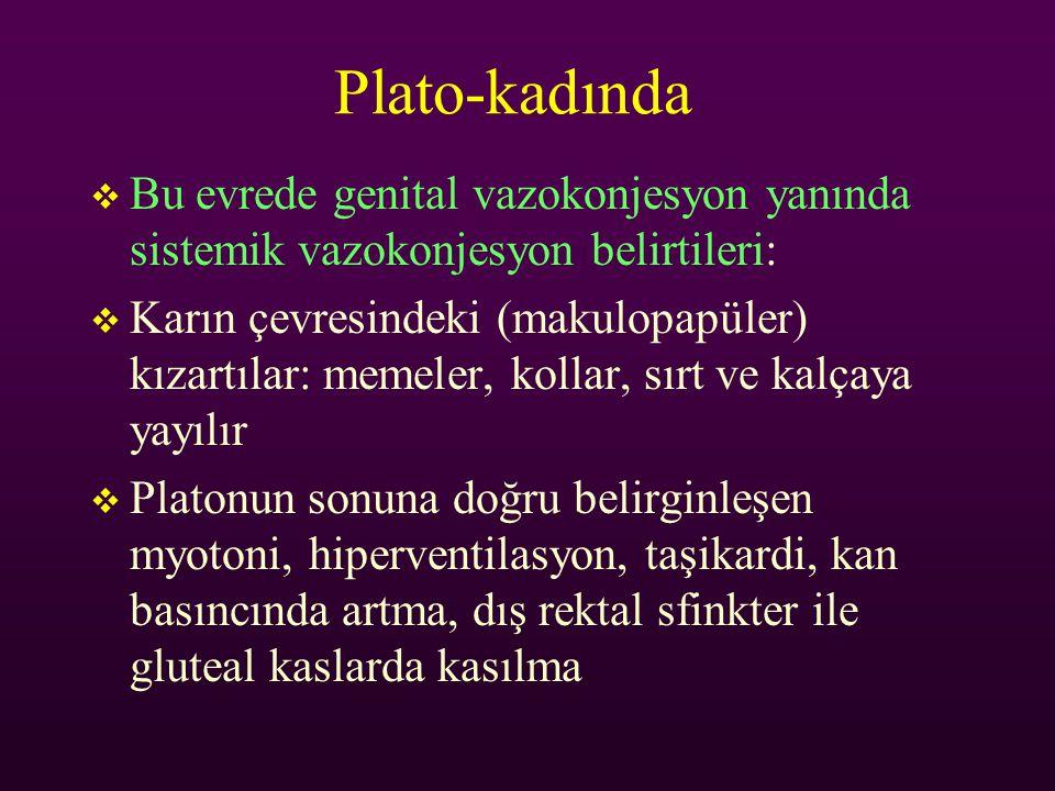 Plato-kadında  Bu evrede genital vazokonjesyon yanında sistemik vazokonjesyon belirtileri:  Karın çevresindeki (makulopapüler) kızartılar: memeler,