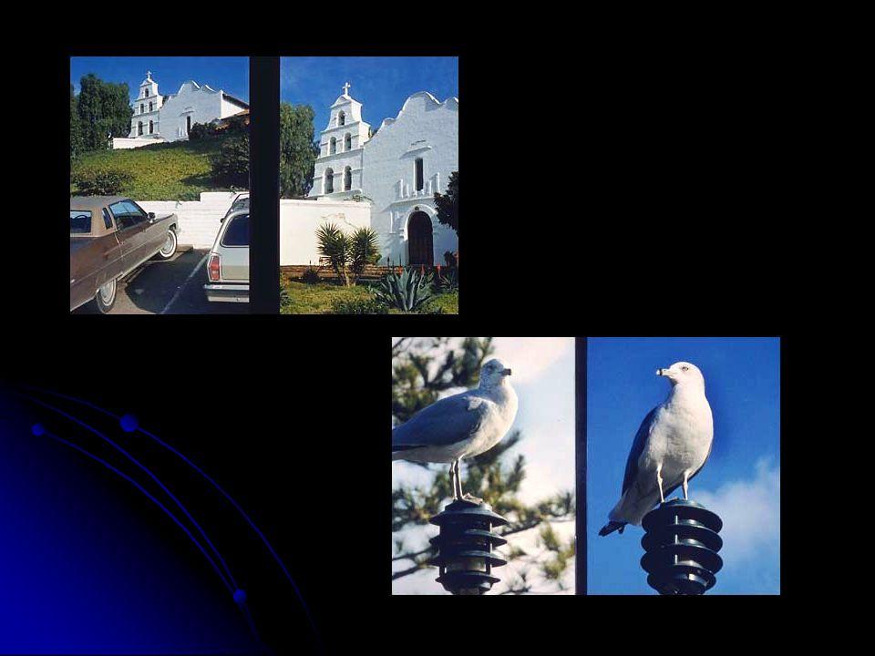 FOTOĞRAFTA BELİRGİNLİĞİ SAĞLAYAN ÖĞELER  1.
