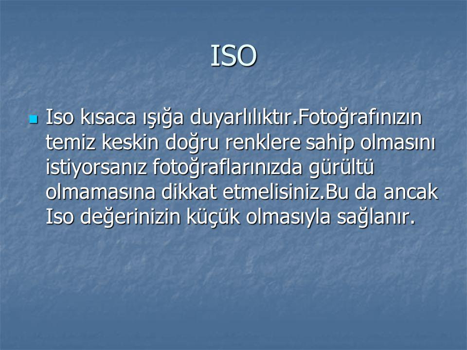 ISO  Iso kısaca ışığa duyarlılıktır.Fotoğrafınızın temiz keskin doğru renklere sahip olmasını istiyorsanız fotoğraflarınızda gürültü olmamasına dikkat etmelisiniz.Bu da ancak Iso değerinizin küçük olmasıyla sağlanır.