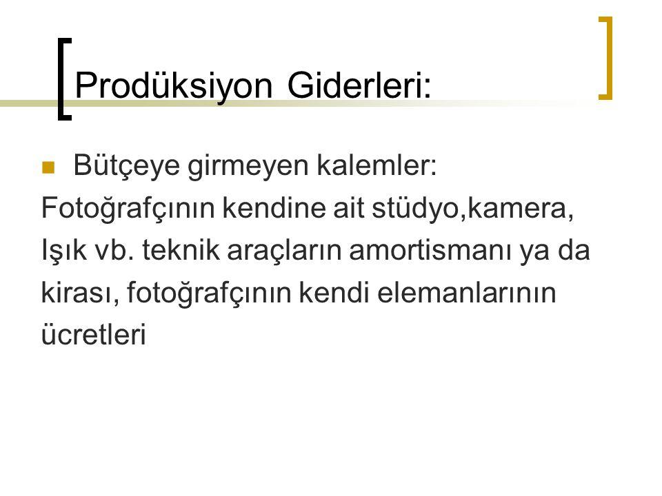 Prodüksiyon Giderleri:  Bütçeye girmeyen kalemler: Fotoğrafçının kendine ait stüdyo,kamera, Işık vb.