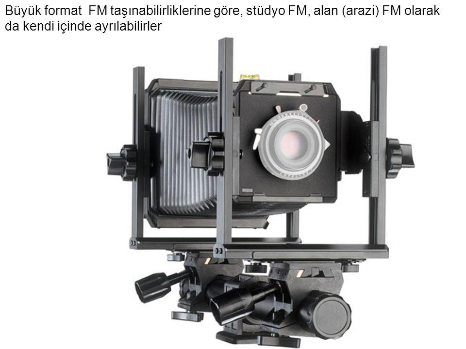 Büyük format FM taşınabilirliklerine göre, stüdyo FM, alan (arazi) FM olarak da kendi içinde ayrılabilirler