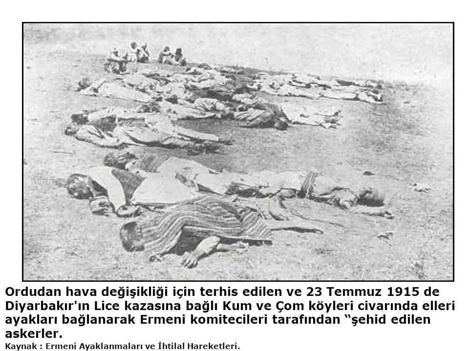Ordudan hava değişikliği için terhis edilen ve 23 Temmuz 1915 de Diyarbakır'ın Lice kazasına bağlı Kum ve Çom köyleri civarında elleri ayakları bağlan