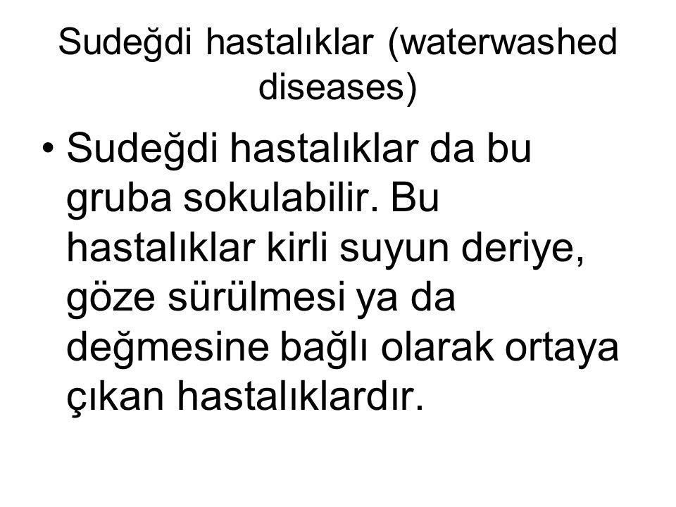 Sudeğdi hastalıklar (waterwashed diseases) •Sudeğdi hastalıklar da bu gruba sokulabilir. Bu hastalıklar kirli suyun deriye, göze sürülmesi ya da değme