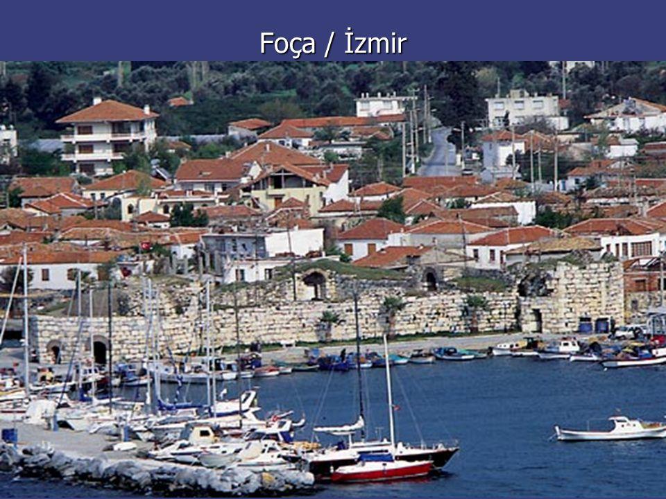 Foça / İzmir