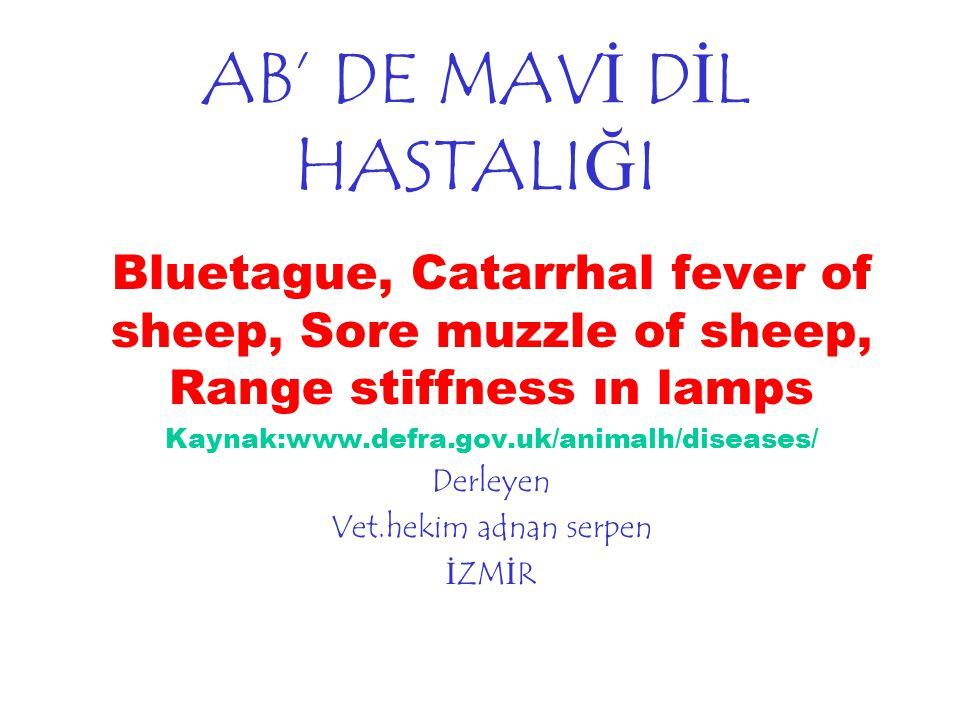 AB' DE MAVİ DİL HASTALIĞI Bluetague, Catarrhal fever of sheep, Sore muzzle of sheep, Range stiffness ın lamps Kaynak:www.defra.gov.uk/animalh/diseases/ Derleyen Vet.hekim adnan serpen İZMİR