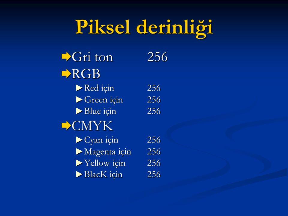 Piksel derinliği  Gri ton 256  RGB ► Red için 256 ► Green için 256 ► Blue için 256  CMYK ► Cyan için 256 ► Magenta için 256 ► Yellow için 256 ► Bla