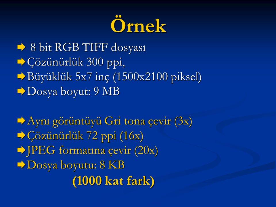 Örnek  8 bit RGB TIFF dosyası  Çözünürlük 300 ppi,  Büyüklük 5x7 inç (1500x2100 piksel)  Dosya boyut: 9 MB  Aynı görüntüyü Gri tona çevir (3x) 