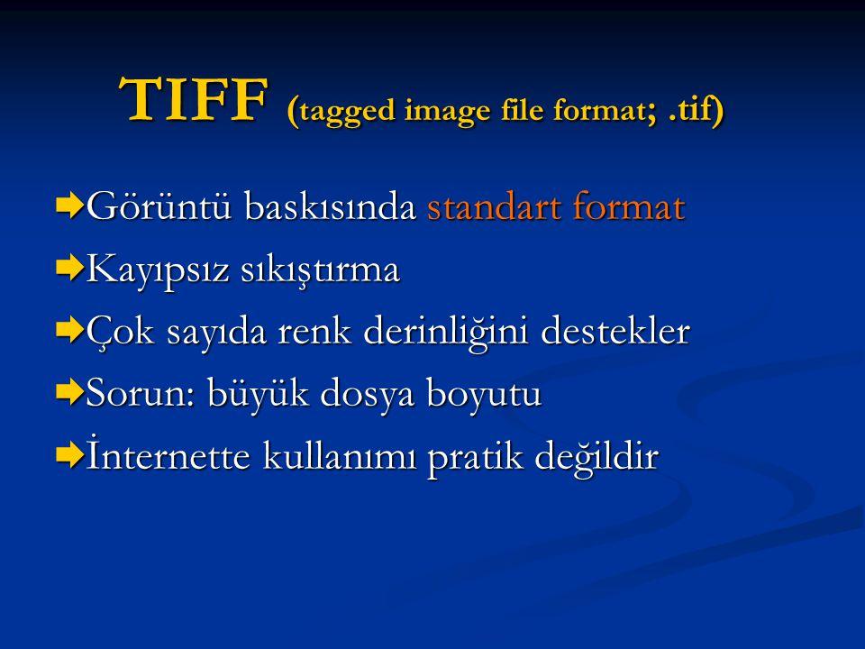 TIFF ( tagged image file format ;.tif)  Görüntü baskısında standart format  Kayıpsız sıkıştırma  Çok sayıda renk derinliğini destekler  Sorun: büy