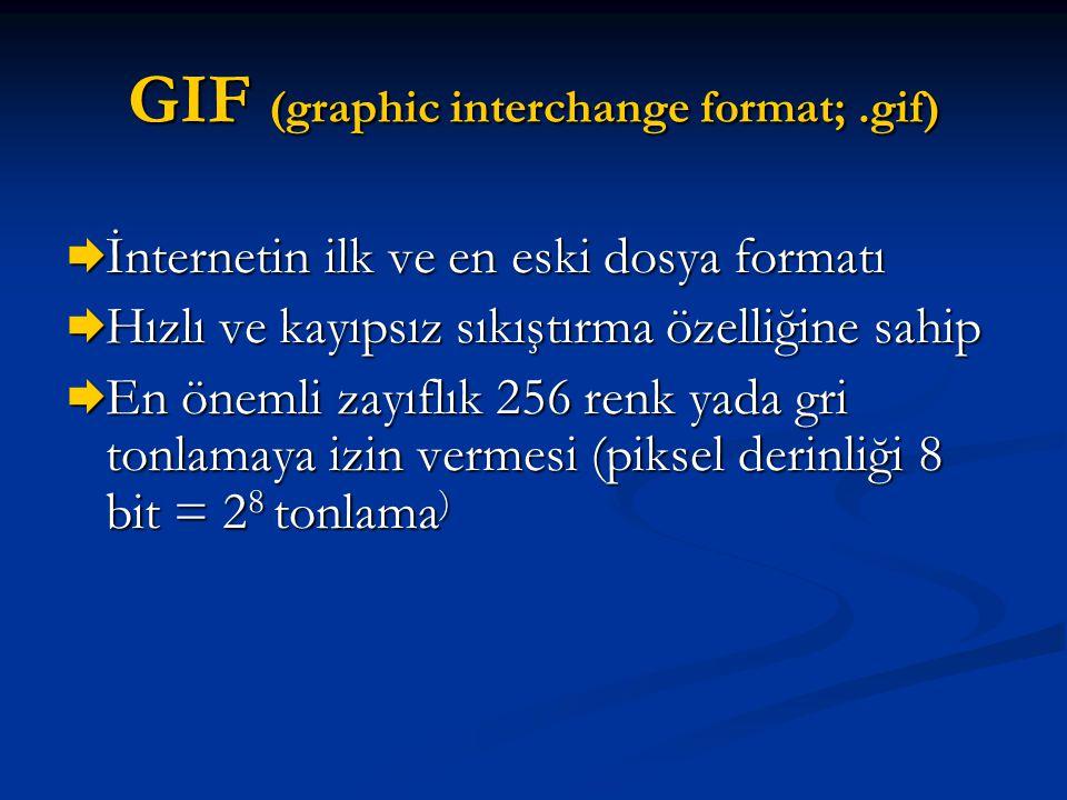GIF (graphic interchange format;.gif)  İnternetin ilk ve en eski dosya formatı  Hızlı ve kayıpsız sıkıştırma özelliğine sahip  En önemli zayıflık 2