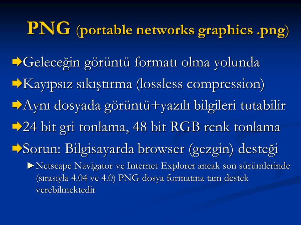 PNG (portable networks graphics.png)  Geleceğin görüntü formatı olma yolunda  Kayıpsız sıkıştırma (lossless compression)  Aynı dosyada görüntü+yazı