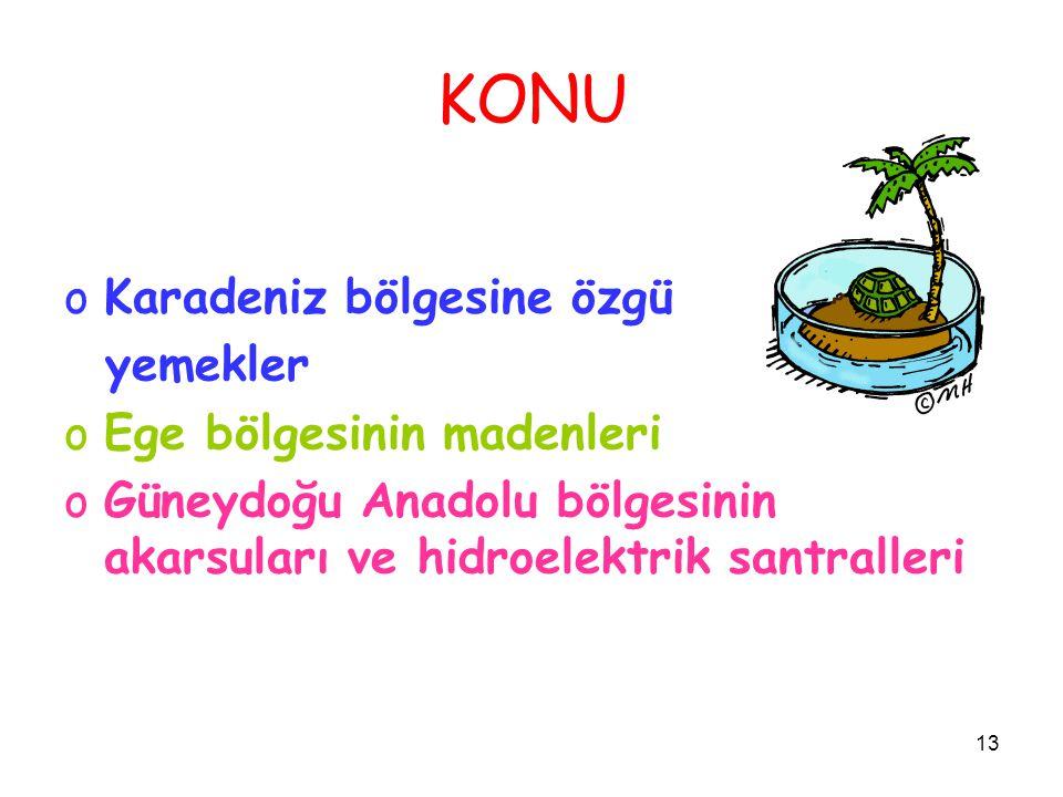 13 KONU oKaradeniz bölgesine özgü yemekler oEge bölgesinin madenleri oGüneydoğu Anadolu bölgesinin akarsuları ve hidroelektrik santralleri