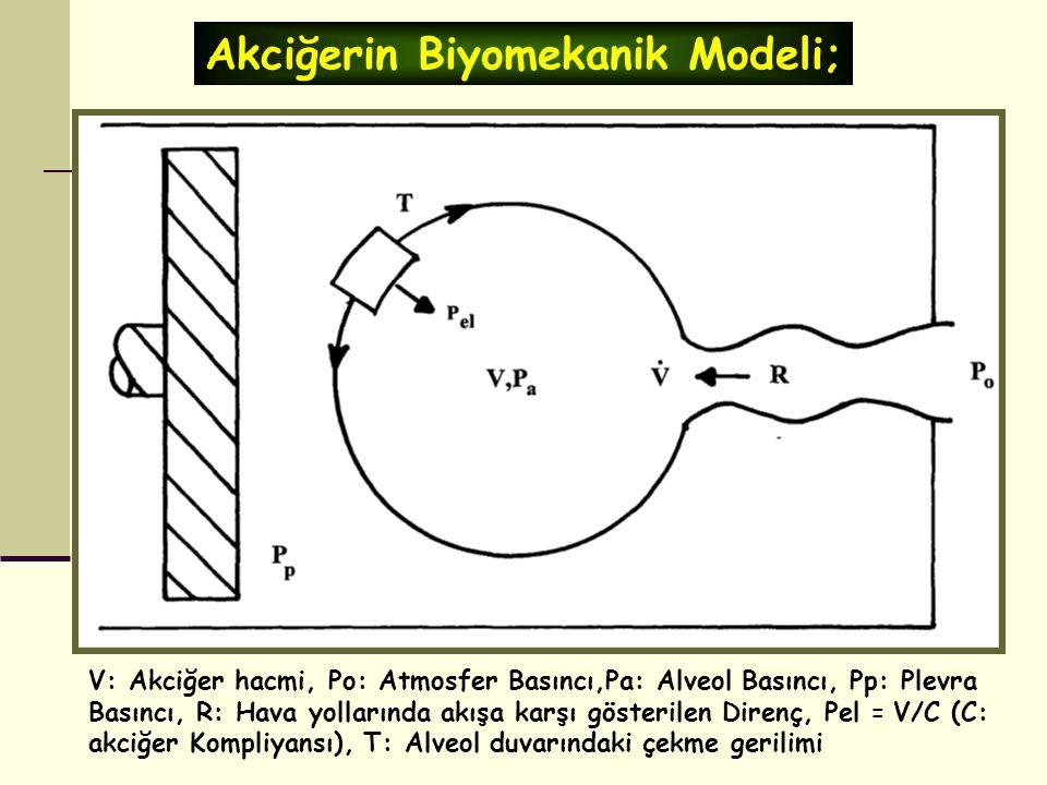 V: Akciğer hacmi, Po: Atmosfer Basıncı,Pa: Alveol Basıncı, Pp: Plevra Basıncı, R: Hava yollarında akışa karşı gösterilen Direnç, Pel = V/C (C: akciğer