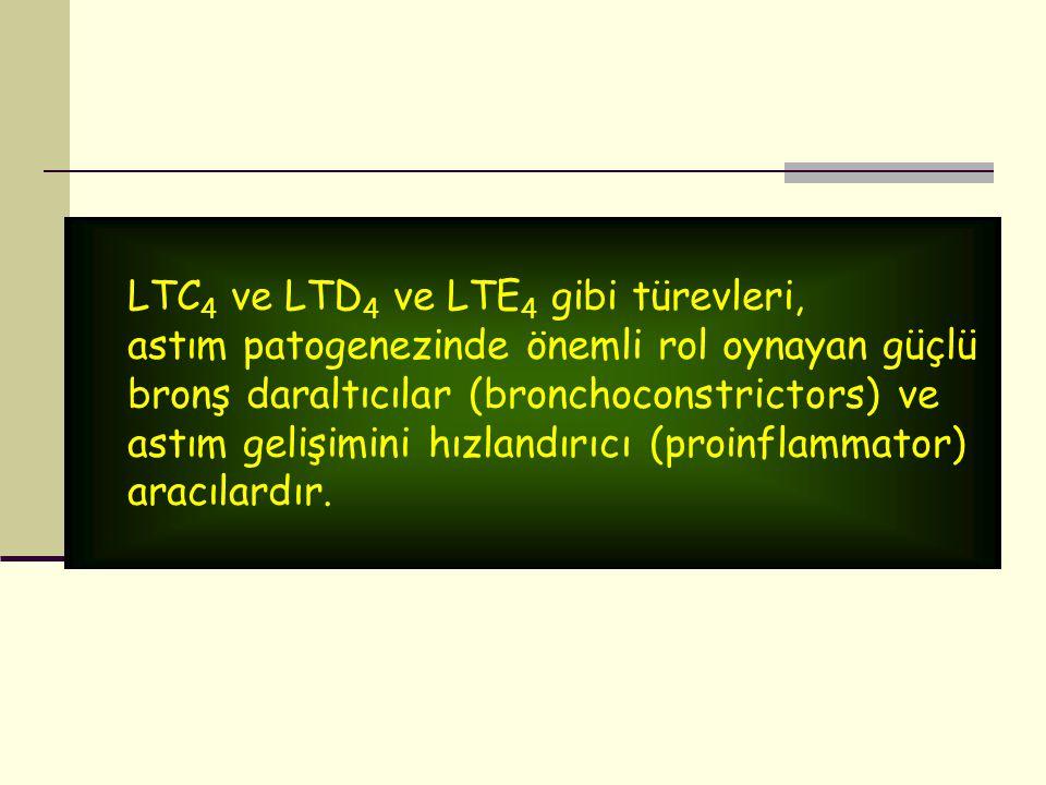 LTC 4 ve LTD 4 ve LTE 4 gibi türevleri, astım patogenezinde önemli rol oynayan güçlü bronş daraltıcılar (bronchoconstrictors) ve astım gelişimini hızl