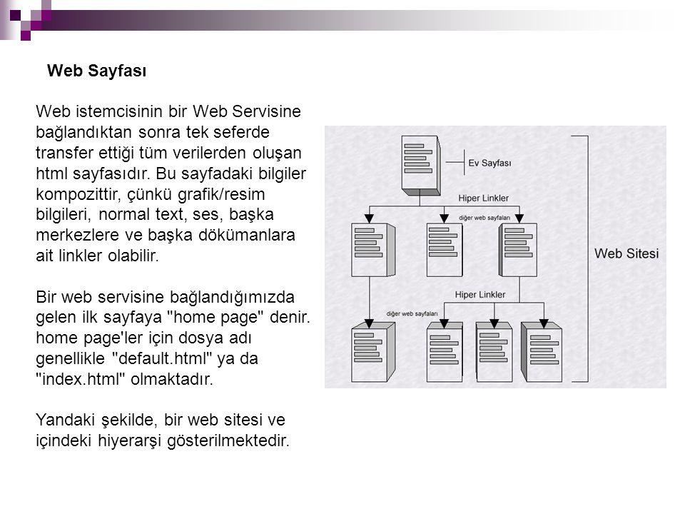 Web istemcisinin bir Web Servisine bağlandıktan sonra tek seferde transfer ettiği tüm verilerden oluşan html sayfasıdır.