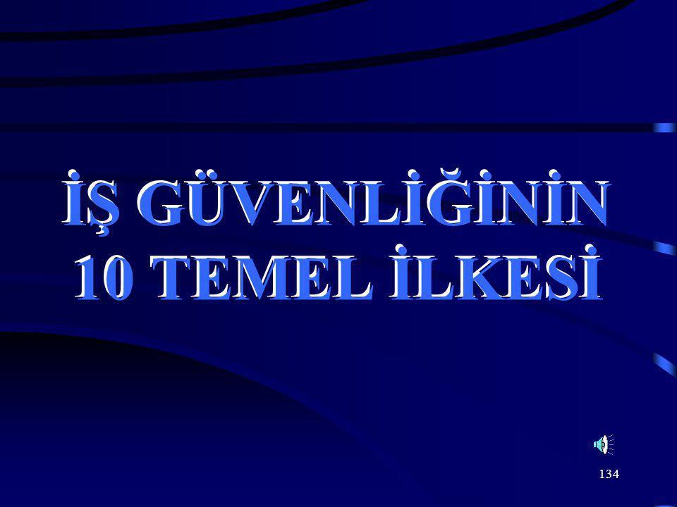 134 İŞ GÜVENLİĞİNİN 10 TEMEL İLKESİ