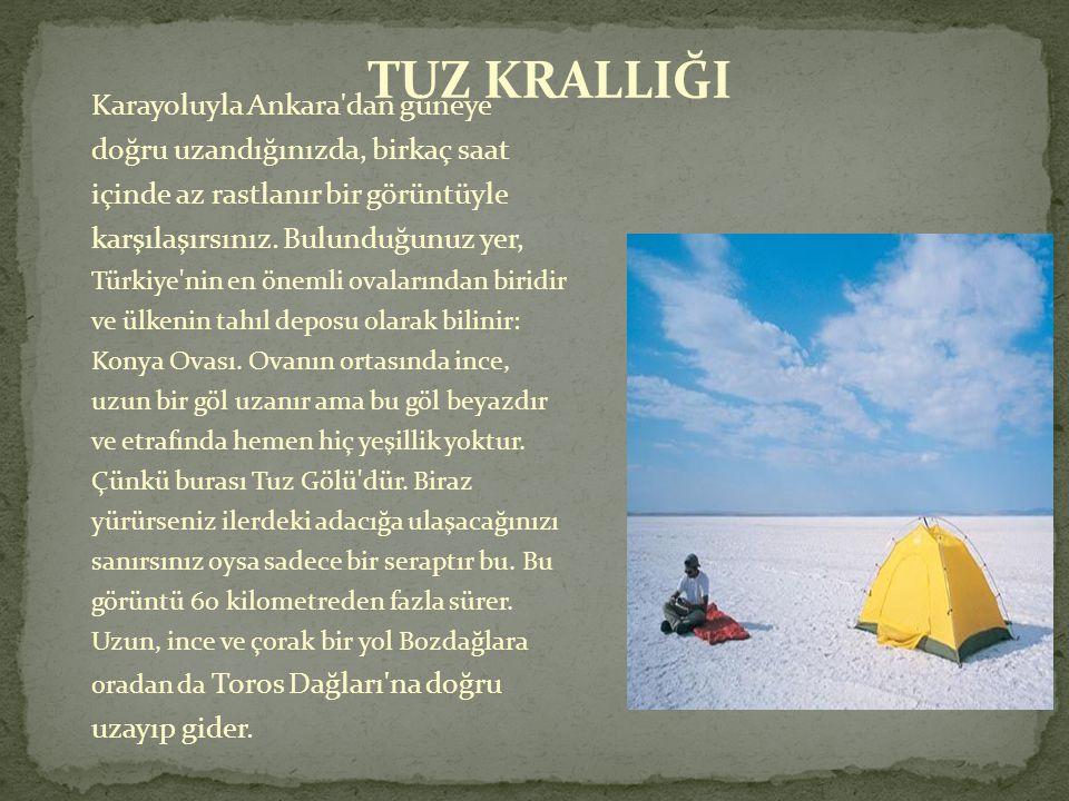  15 bin kilometre karelik bir alana yayılmış olan Tuz Gölü, Türkiye nin ikinci büyük gölü ama derinliği çoğu yerde yarım metreyi bile bulmuyor ve kış aylarındaki yağışlarla birlikte bir kuş cenneti haline geliyor.