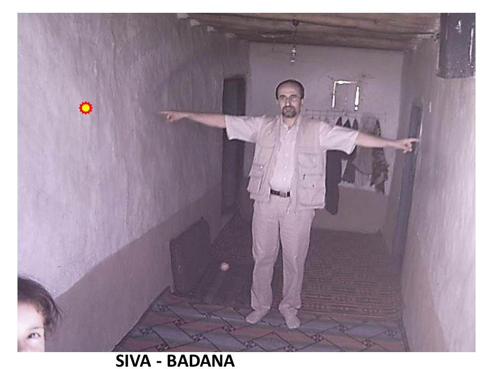 SIVA - BADANA