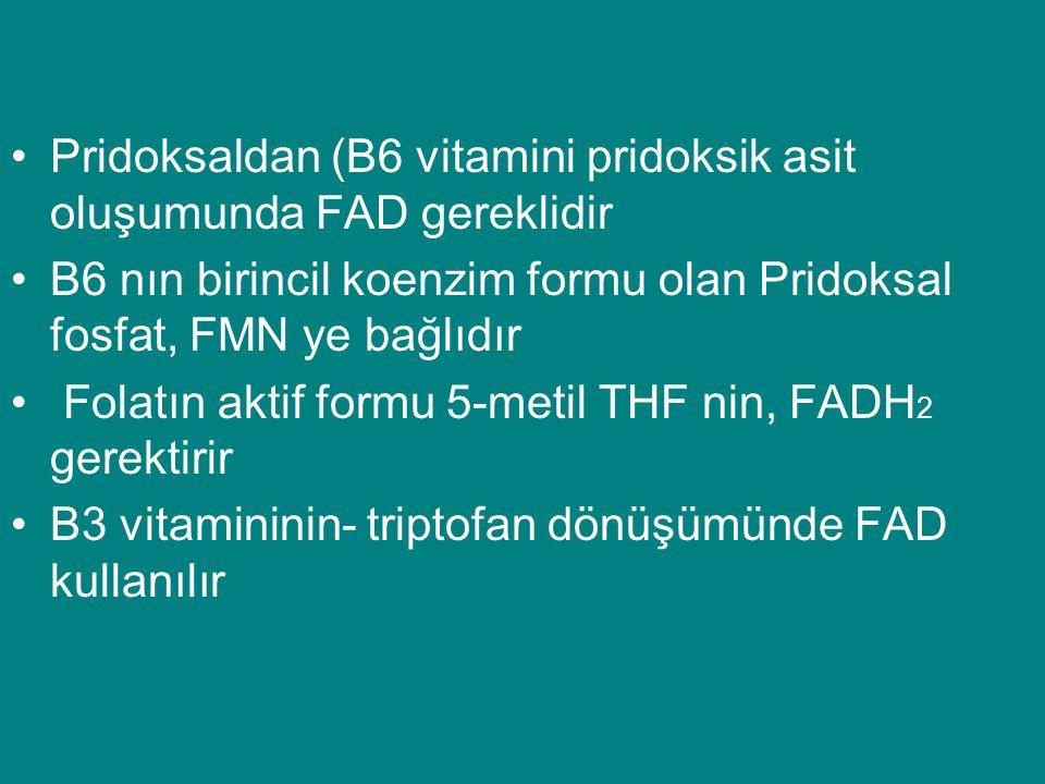 •Pridoksaldan (B6 vitamini pridoksik asit oluşumunda FAD gereklidir •B6 nın birincil koenzim formu olan Pridoksal fosfat, FMN ye bağlıdır • Folatın ak