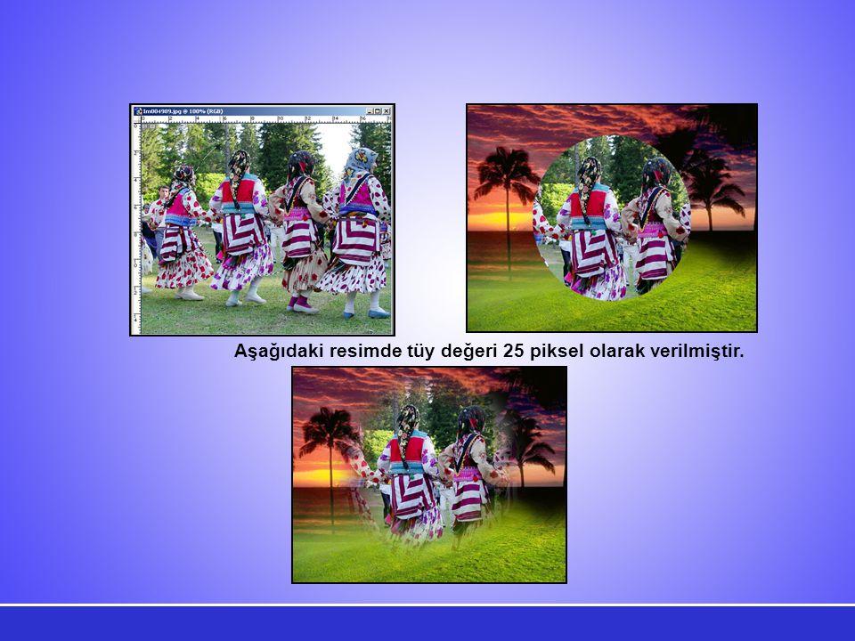 Aşağıdaki resimde tüy değeri 25 piksel olarak verilmiştir.