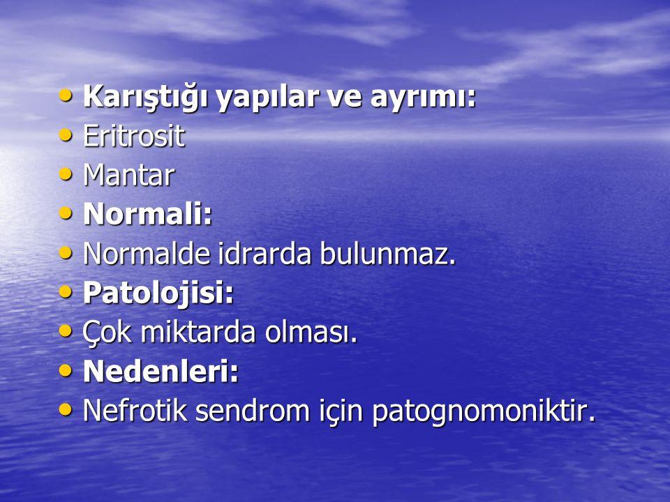 • Karıştığı yapılar ve ayrımı: • Eritrosit • Mantar • Normali: • Normalde idrarda bulunmaz.
