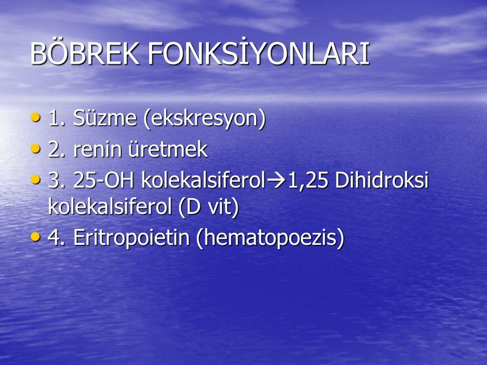 BÖBREK FONKSİYONLARI • 1. Süzme (ekskresyon) • 2. renin üretmek • 3. 25-OH kolekalsiferol  1,25 Dihidroksi kolekalsiferol (D vit) • 4. Eritropoietin