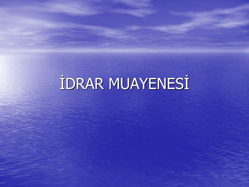 İDRAR MUAYENESİ