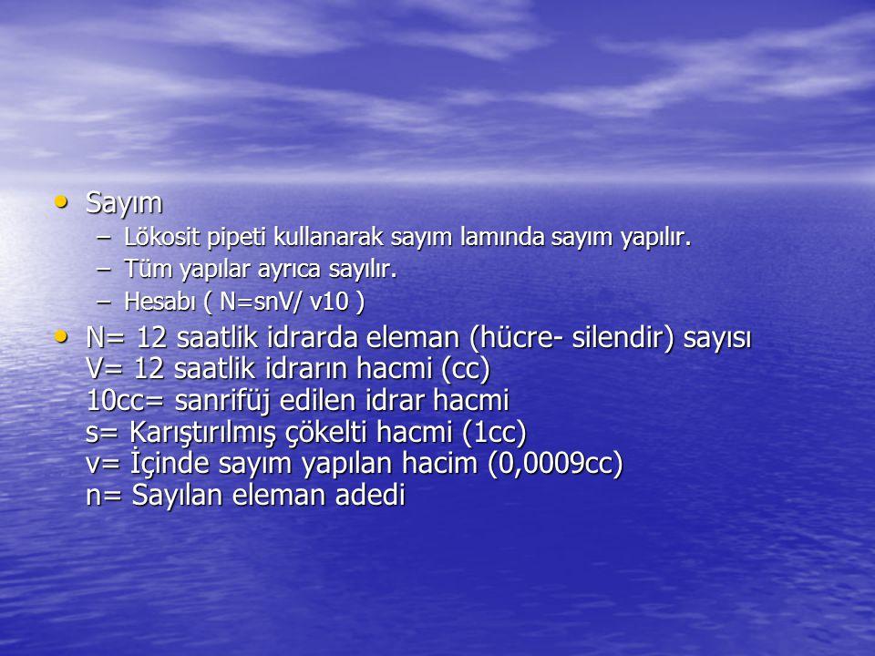 • Sayım –Lökosit pipeti kullanarak sayım lamında sayım yapılır. –Tüm yapılar ayrıca sayılır. –Hesabı ( N=snV/ v10 ) • N= 12 saatlik idrarda eleman (hü