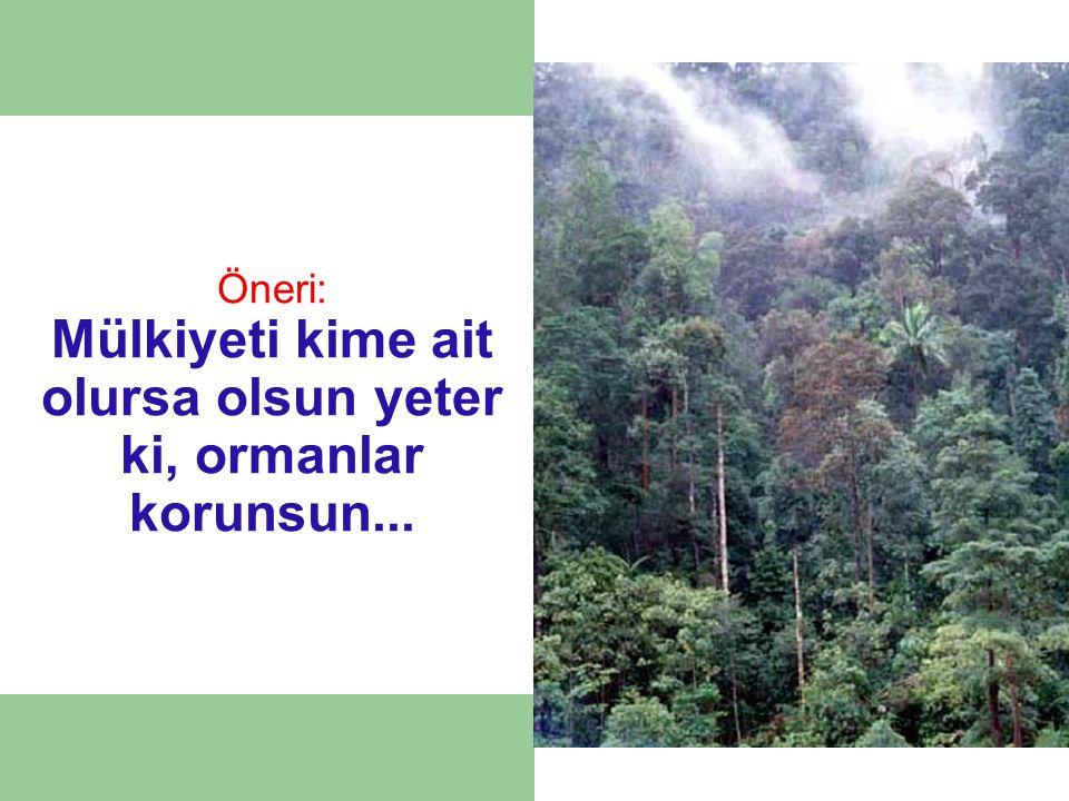 Öneri: Mülkiyeti kime ait olursa olsun yeter ki, ormanlar korunsun...