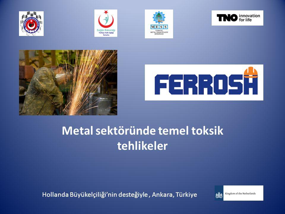 Metal sektöründe temel toksik tehlikeler Hollanda Büyükelçiliği'nin desteğiyle, Ankara, Türkiye