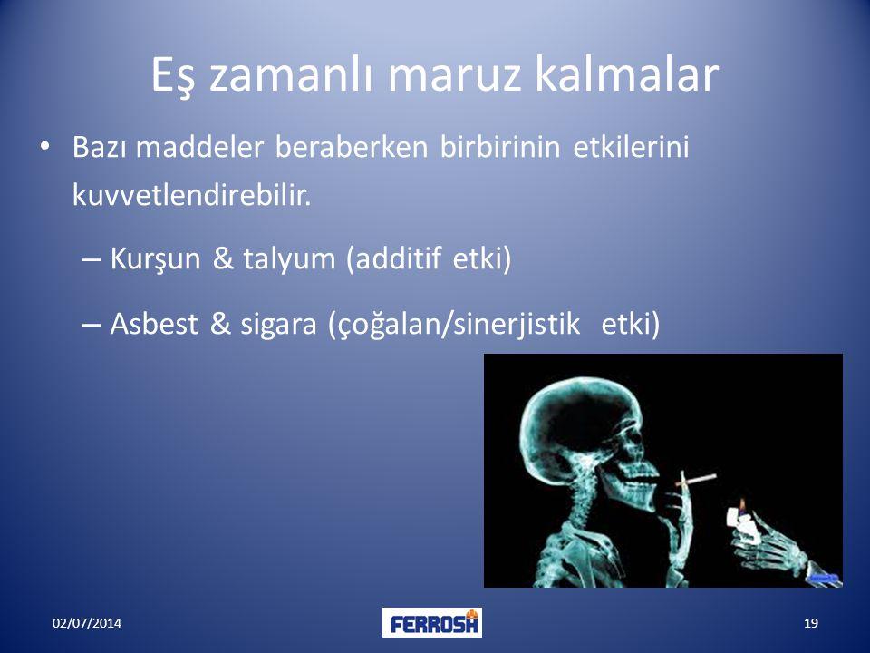 Eş zamanlı maruz kalmalar • Bazı maddeler beraberken birbirinin etkilerini kuvvetlendirebilir. – Kurşun & talyum (additif etki) – Asbest & sigara (çoğ