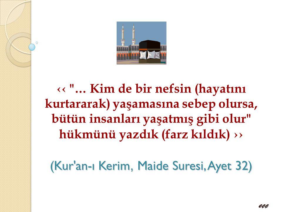 (Kur'an-ı Kerim, Maide Suresi, Ayet 32) ‹‹