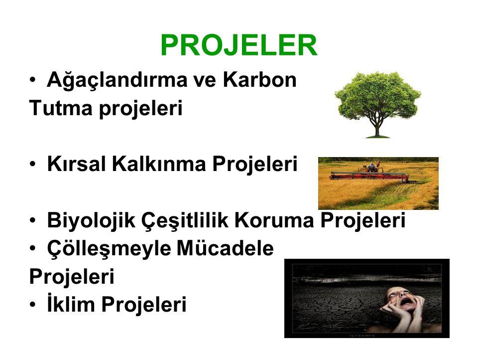 PROJELER •Ağaçlandırma ve Karbon Tutma projeleri •Kırsal Kalkınma Projeleri •Biyolojik Çeşitlilik Koruma Projeleri •Çölleşmeyle Mücadele Projeleri •İk