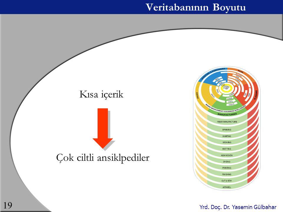Yrd. Doç. Dr. Yasemin Gülbahar 19 Veritabanının Boyutu Kısa içerik Çok ciltli ansiklpediler