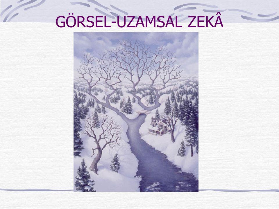 GÖRSEL-UZAMSAL ZEKÂ