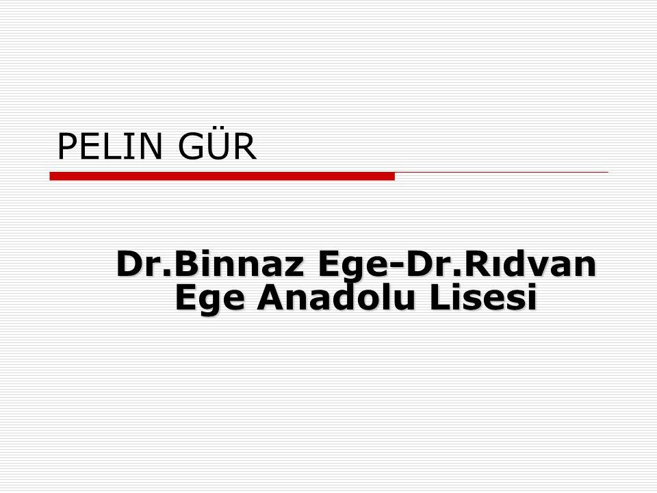 HASAN METEHAN KAPLAN Prof. Dr. Şevket Raşit Hatipoğlu Anadolu Lisesi