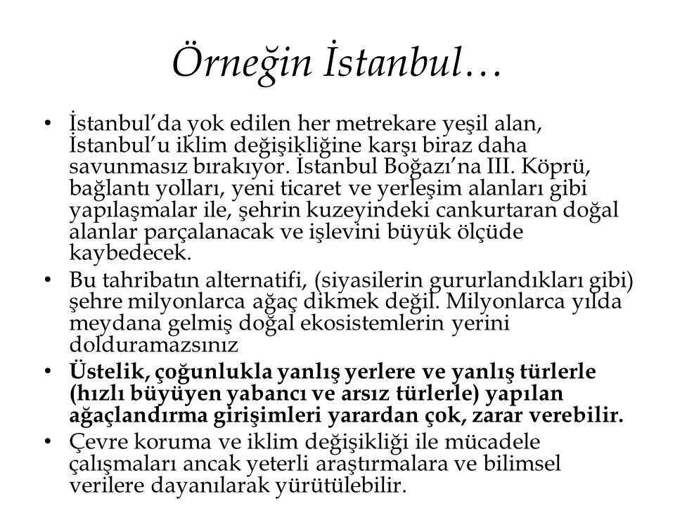 Örneğin İstanbul… • İstanbul'da yok edilen her metrekare yeşil alan, İstanbul'u iklim değişikliğine karşı biraz daha savunmasız bırakıyor. İstanbul Bo
