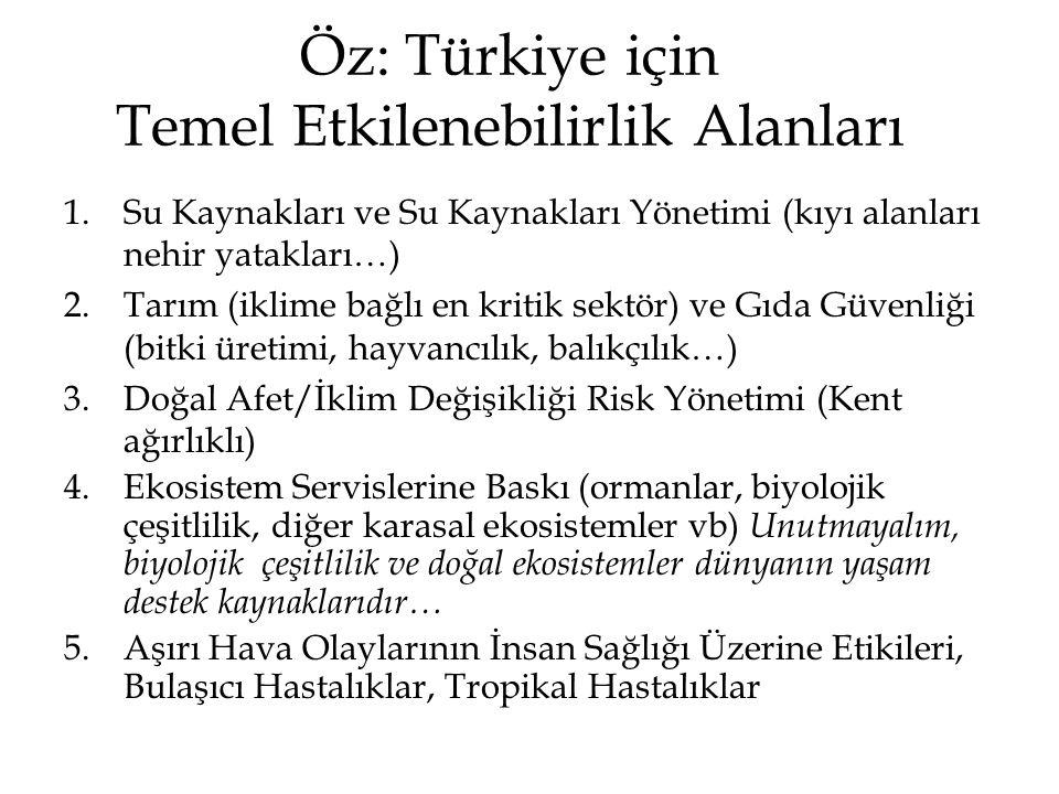 Öz: Türkiye için Temel Etkilenebilirlik Alanları 1.Su Kaynakları ve Su Kaynakları Yönetimi (kıyı alanları nehir yatakları…) 2.Tarım (iklime bağlı en k