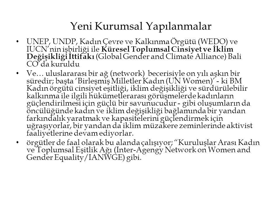 Yeni Kurumsal Yapılanmalar • UNEP, UNDP, Kadın Çevre ve Kalkınma Örgütü (WEDO) ve IUCN'nin işbirliği ile Küresel Toplumsal Cinsiyet ve İklim Değişikli