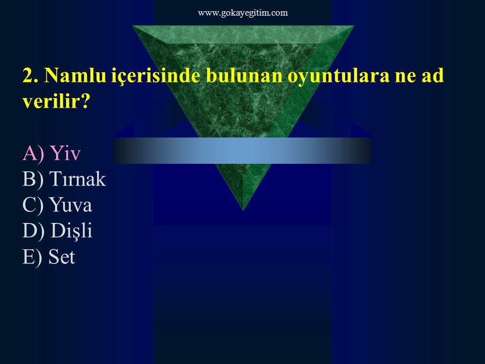 www.gokayegitim.com 3.