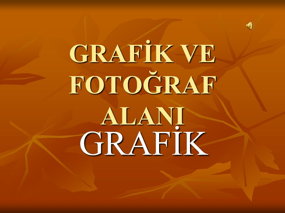 GRAFİK VE FOTOĞRAF ALANI GRAFİK