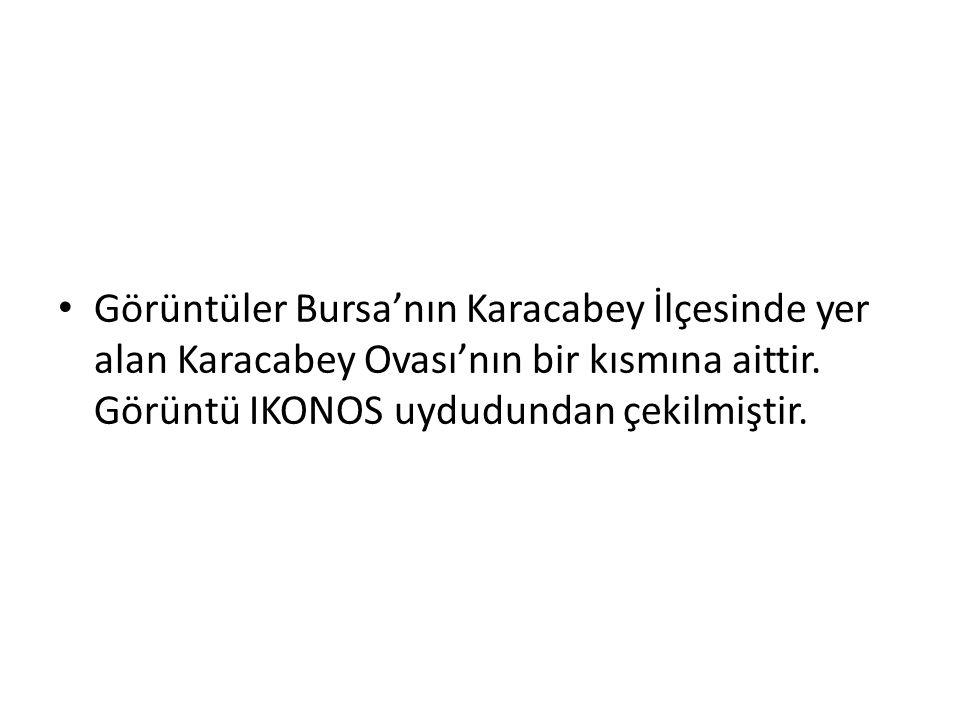 • Görüntüler Bursa'nın Karacabey İlçesinde yer alan Karacabey Ovası'nın bir kısmına aittir. Görüntü IKONOS uydudundan çekilmiştir.