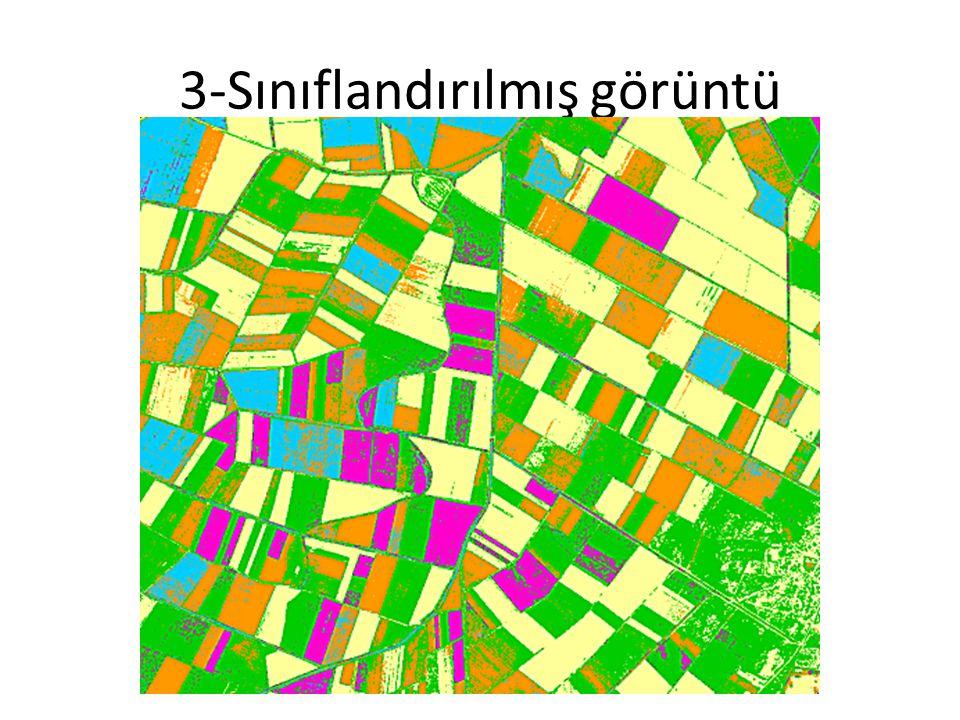 3-Sınıflandırılmış görüntü