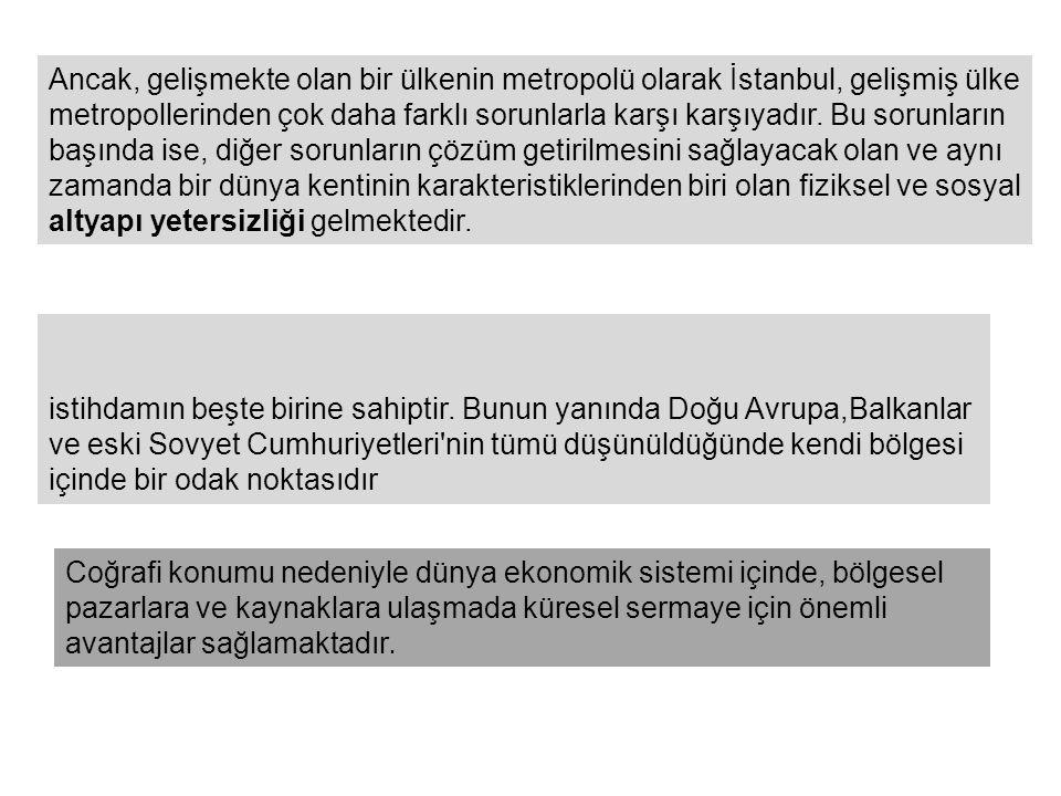 Ancak, gelişmekte olan bir ülkenin metropolü olarak İstanbul, gelişmiş ülke metropollerinden çok daha farklı sorunlarla karşı karşıyadır.