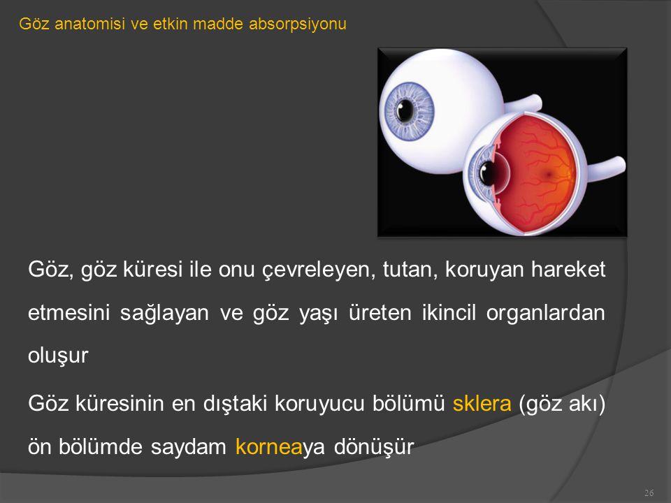 Göz anatomisi ve etkin madde absorpsiyonu Göz, göz küresi ile onu çevreleyen, tutan, koruyan hareket etmesini sağlayan ve göz yaşı üreten ikincil organlardan oluşur Göz küresinin en dıştaki koruyucu bölümü sklera (göz akı) ön bölümde saydam korneaya dönüşür 26