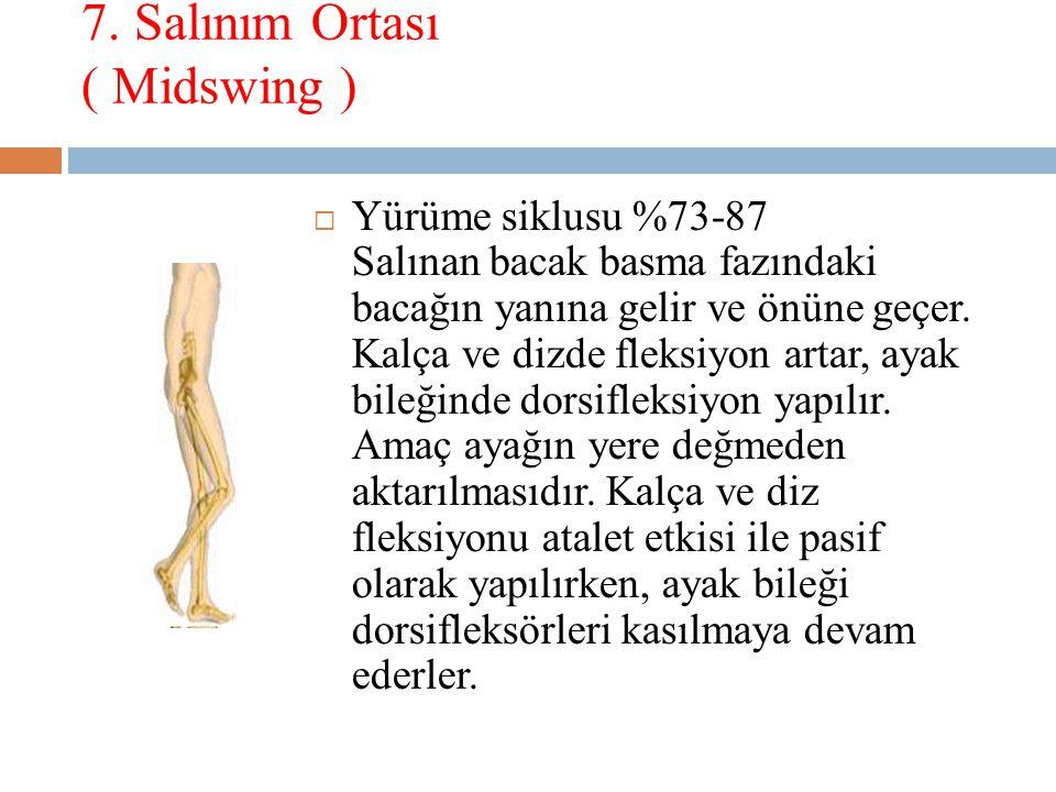 7. Salınım Ortası ( Midswing )  Yürüme siklusu %73-87 Salınan bacak basma fazındaki bacağın yanına gelir ve önüne geçer. Kalça ve dizde fleksiyon art