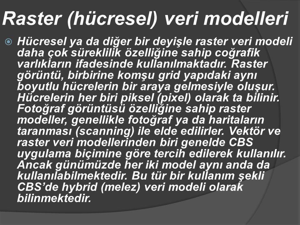 Raster (hücresel) veri modelleri  Hücresel ya da diğer bir deyişle raster veri modeli daha çok süreklilik özelliğine sahip coğrafik varlıkların ifade