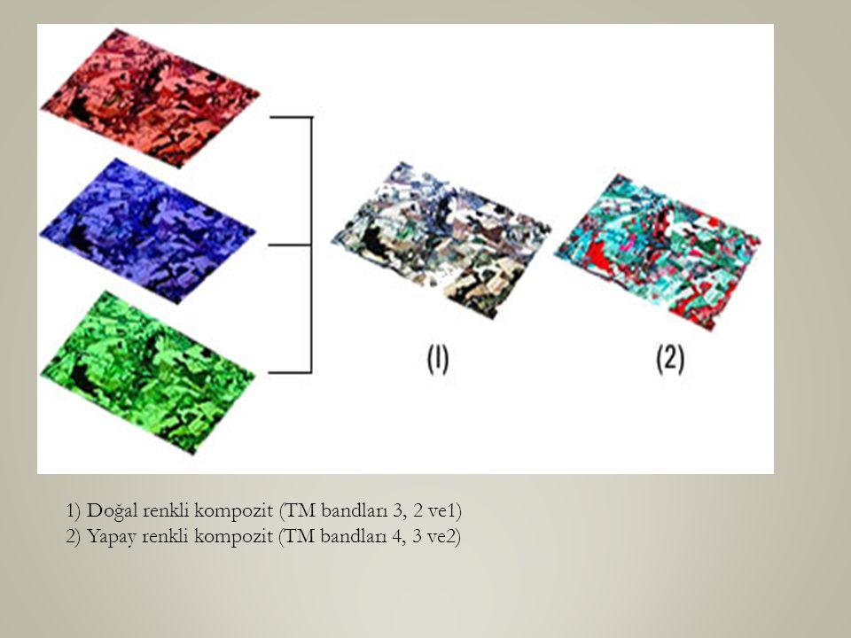 1) Doğal renkli kompozit (TM bandları 3, 2 ve1) 2) Yapay renkli kompozit (TM bandları 4, 3 ve2)