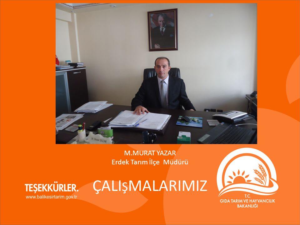 M.MURAT YAZAR Erdek Tarım İlçe Müdürü ÇALI Ş MALARIMIZ