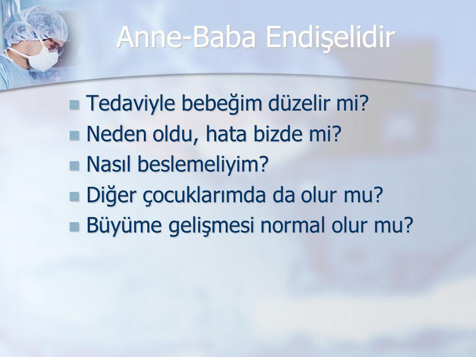 Embriyoloji  Gestasyonun 4-7.